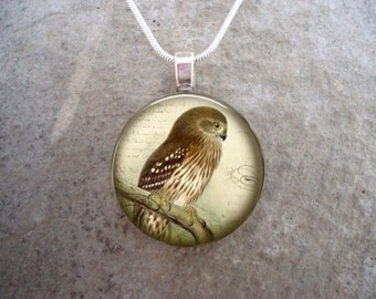 Owl Jewelry - Glass Pendant Necklace - Victorian Bird 13