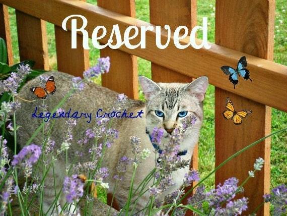 Reserved - 4 Catnip Toys