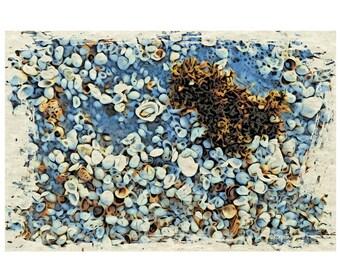 Seashells Beach Seashore Coastal Glicee Print from original digital painting - Flotsam and Jetsam  8x12, 12x18 and 16x24 Korpita ebsq