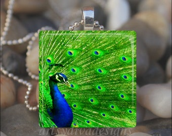 MAJESTIC PEACOCK Bird Peacock Feather Glass Tile Pendant Necklace Keyring