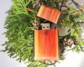 Wood flash drive pendant. 16 GB. Thumb drive necklace.