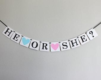 gender reveal party banner - gender reveal party - gender reveal decorations - baby shower banner - baby shower decorations - He or She?
