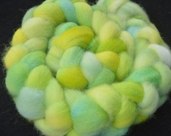 Hand Dyed Shetland Wool Roving   4 Ounces  Inv 195
