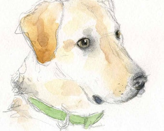 Yellow Lab Painting - Labrador Watercolor - Dog Art - Yellow Lab watercolor