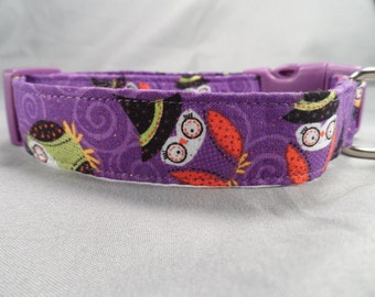 Adorable Owls Halloween Dog Collar