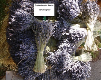 Dried English Lavender Bunches - A Highly Fragrant Herb