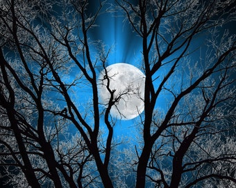 Blue Sky Moon Tree Modern Blue Bedroom Home Decor Wall Art Matted Picture