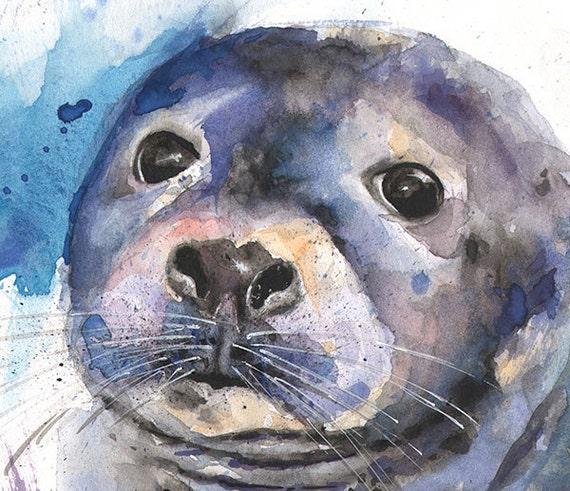 Seal watercolor painting sea life art seal print by for Sea life paintings artists
