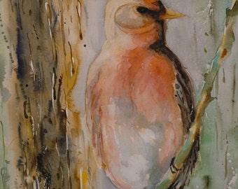Sweetbird