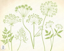 Wild herbs, flowers, silhouette vector clip art, dandelion, parsley, carrot, dill, card, label, diy stationery