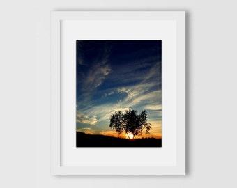 Serene California Sunset | Sunset Photography | Gift Under 30 | Palm Tree Skyline