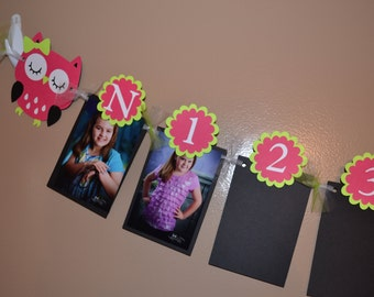 Owl Newborn to 12 Month Photo Banner - First Birthday - Birthday Party