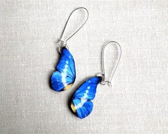 Blue butterfly wing earrings, Winter jewelry, Butterfly earrings, Butterfly jewelry, Insect jewelry, Free Shipping Worldwide.