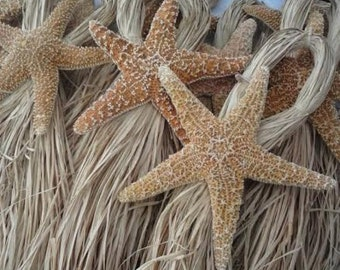 Beach Wedding Starfish Chair Decorations  - Starfish Chair Or Aisleway Decorations