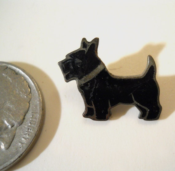 pin coolest scottie - photo #20