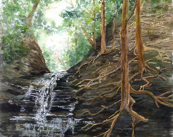 Waterfall Glen.  A giclee print of an original watercolor painting.