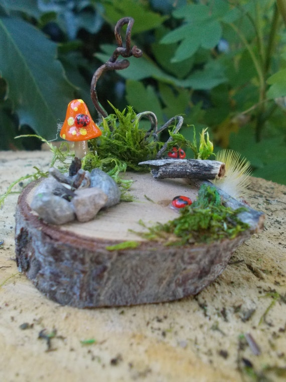 Miniature fairy garden oasis ladybug orange mushroom for - Vertical gardens miniature oases ...