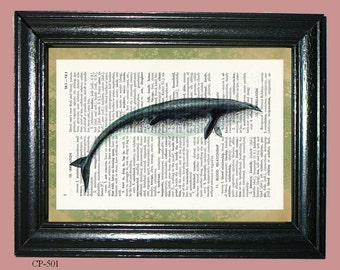 Basilosaurus Prehistoric Whale Dictionary Page Art Print Upcycled Page Art Dictionary Print Home Decor cp501