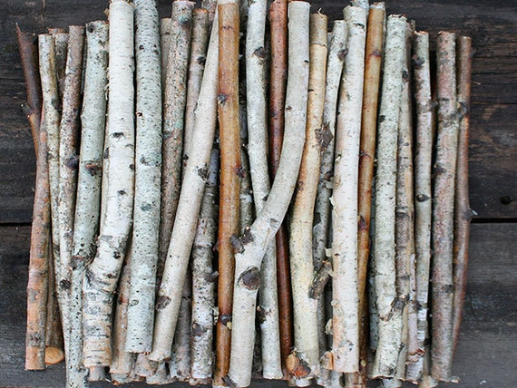 White birch branches wood logs paper by exstore
