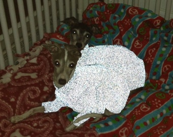 MoonBrite Reflective Safety Clothing for Italian greyhounds-several weights