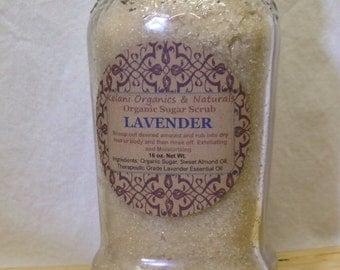 Organic Lavender Sugar Body Scrub w/ Sweet Almond Oil - 16oz - Vegan, Organic Sugar Scrub
