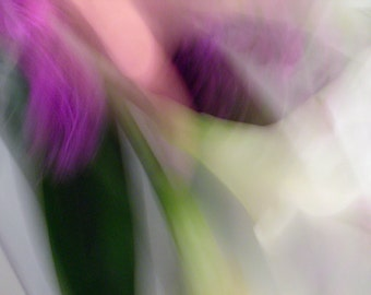 Horn: Abstract Floral, Ethereal, Wall Decor, Fine Art Photograph