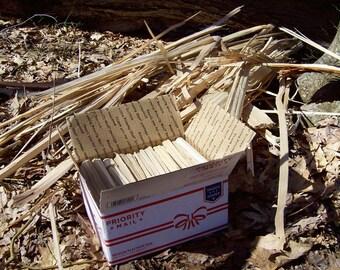 SPLINTERS Sugar Maple Wood - No Bark - Clean Fresh - Acer saccharum - Medium Flat Rate Box