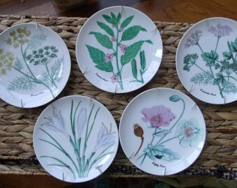 Vintage Flower and Herb Plate Set from Japan