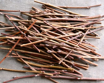 Willow Tree Branches, Wood Branch, Craft sticks, Natural Branch, Tree Branch, Craft supply Wooden Branches, Decorative Branch, Craft supply