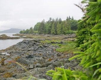 Alaska Ketchikan Landscape Ocean Photography Photo Art 8x10 Print