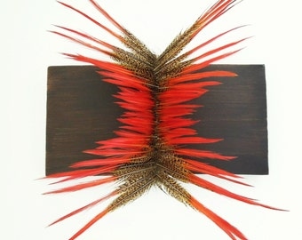 Spine (pheasant  feather wall hanging)