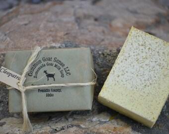 Cleopatra Goat Milk Castile Soap