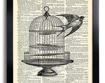 Bird Cage Art Print Birds Art Print, Vintage Illustration Dictionary Page Art Decor, Anniversary Gift for Wife, Bird Cage Artwork Print 255