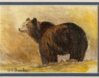 Back Bear..............Original Watercolor Painting
