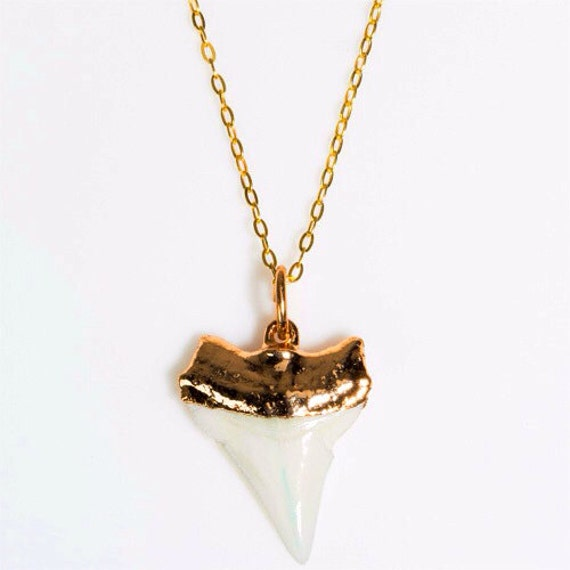 white gold dipped shark tooth necklace real shark tooth 14k