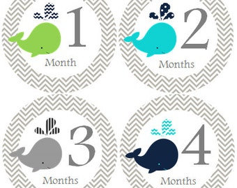 Monthly Baby Stickers Boy Monthly Onesie Stickers Whale