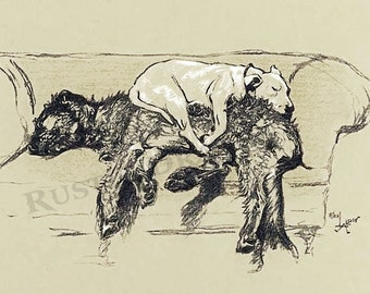 """Cecil Aldin  """"Sleeping Dogs""""  Reproduction Digital Print 2 dogs on loveseat sleeping Wall Hanging"""