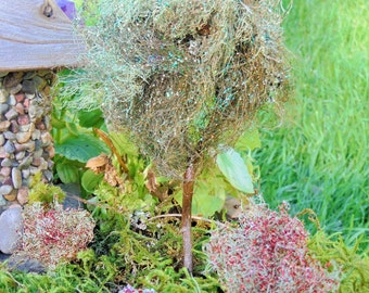 Fairy Gardens Miniature Moss Tree and Fall Shrubs