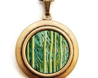 Bamboo - Nature Plant Photo Locket Necklace
