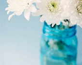 Flower photography, white garden flowers, turquoise, blue, aqua, flower pictures, shabby chic photo, daisies - They go hand in hand