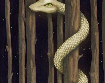 Giant Forest Snake - Graphite & Digital Illustration Animal Nature Art Print