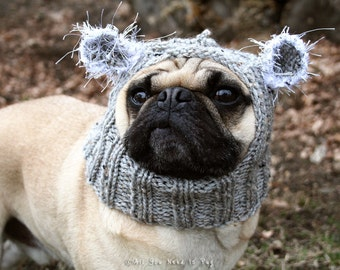 Baby Koala Dog Hat - Pug Hat - Pug Hats - Dog Clothing - Pet Cloting - Dog Costume - Dog Hats