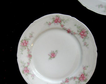 Vintage Plates Rose Garlands Pink Bavaria Heirloom Collectible 1905 Set of Two