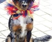Dog Festive Jester Ribbon Collar