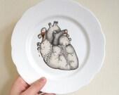 Anatomical Heart Illustration Plate Art