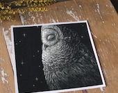Nocturnal Barred Owl - ECO Limited Edition Fine Art Print