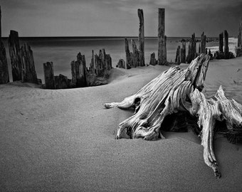 Tree Stump on the Sandy Beach on Lake Michigan at Kirk Park near Grand Haven Michigan No.0015 A Black and White Fine Art Seascape Photograph
