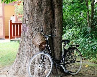 Bicycle Photography - Copenhagen Denmark Wall Art - Summer Print - Tree Photo Bike Print Red Yellow Green Natural Travel Photography