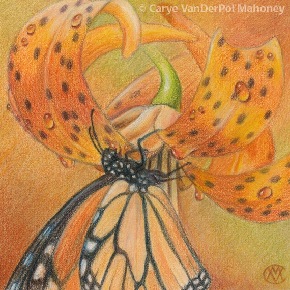 """Orange Monarch butterfly on a Tiger Lily with water drops - Art Reproduction (Print) - ORANGE in """"Camouflage (Secondary Colors)"""" Series"""
