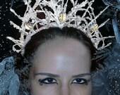 Frost Empress Crown
